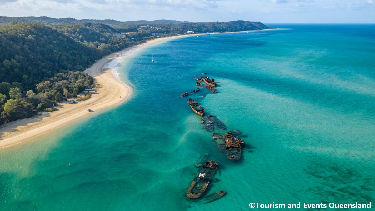 モートン島はイルカと触れ合える最高の体験ができる美しい砂の島🏝