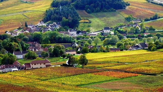 ブルゴーニュのブドウ畑のクリマの画像 p1_15