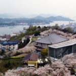 春の千光寺公園と尾道水道