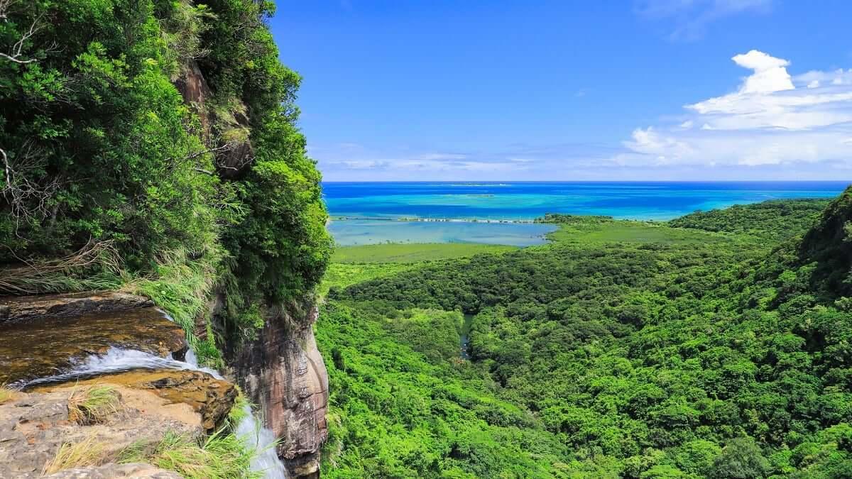 西表島の観光にはレンタカーがおすすめ!予約も必須