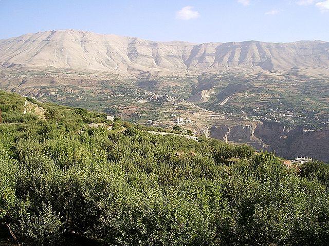 レバノン杉が生息する絶景、世界遺産カディーシャ渓谷と神のスギ