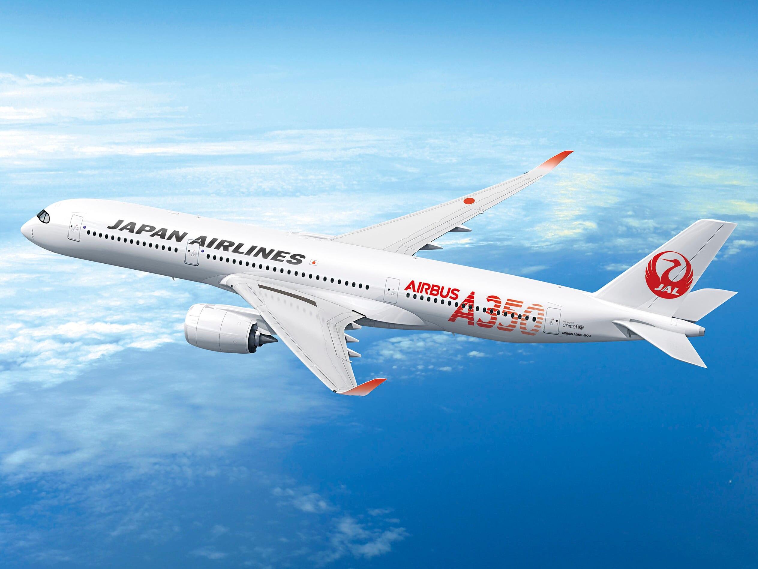 「JAL」の画像検索結果