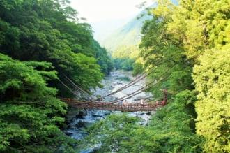 祖谷のかずら橋 三好観光