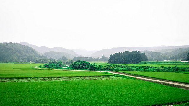 自然いっぱいのスイカの里、尾花沢市の観光スポット5選