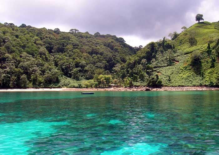 世界のトップ10にも入るダイビングスポット!ココ島国立公園