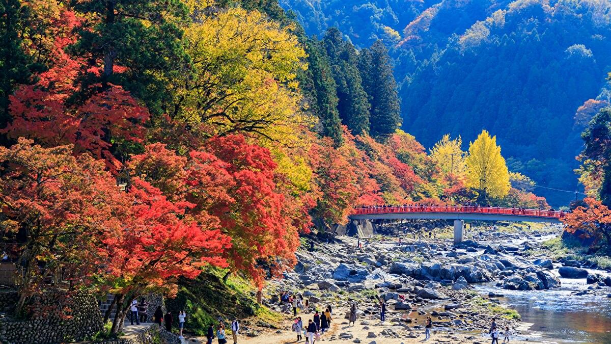 四季折々で美しい姿を見せる香嵐渓の観光情報をお届けします!