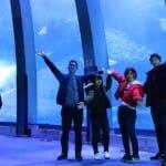 横浜・八景島シーパラダイス、水槽の前で楽しそうな4人