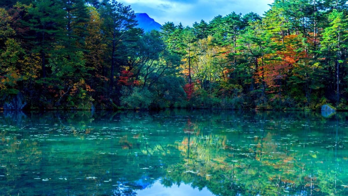 五色沼湖沼群   さまざまな色に変化する沼の散策コースをご紹介