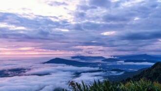 タイのルーイ県にあるプールアのプールア国立公園から見える美しい霧がまとう景色