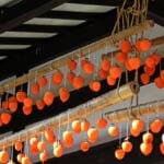 富山県のご当地グルメ7選!(画像は日本の田舎の風景吊り干し柿家)