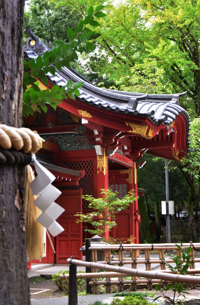 【関東地方8選】初詣するならこの神社がオススメ!