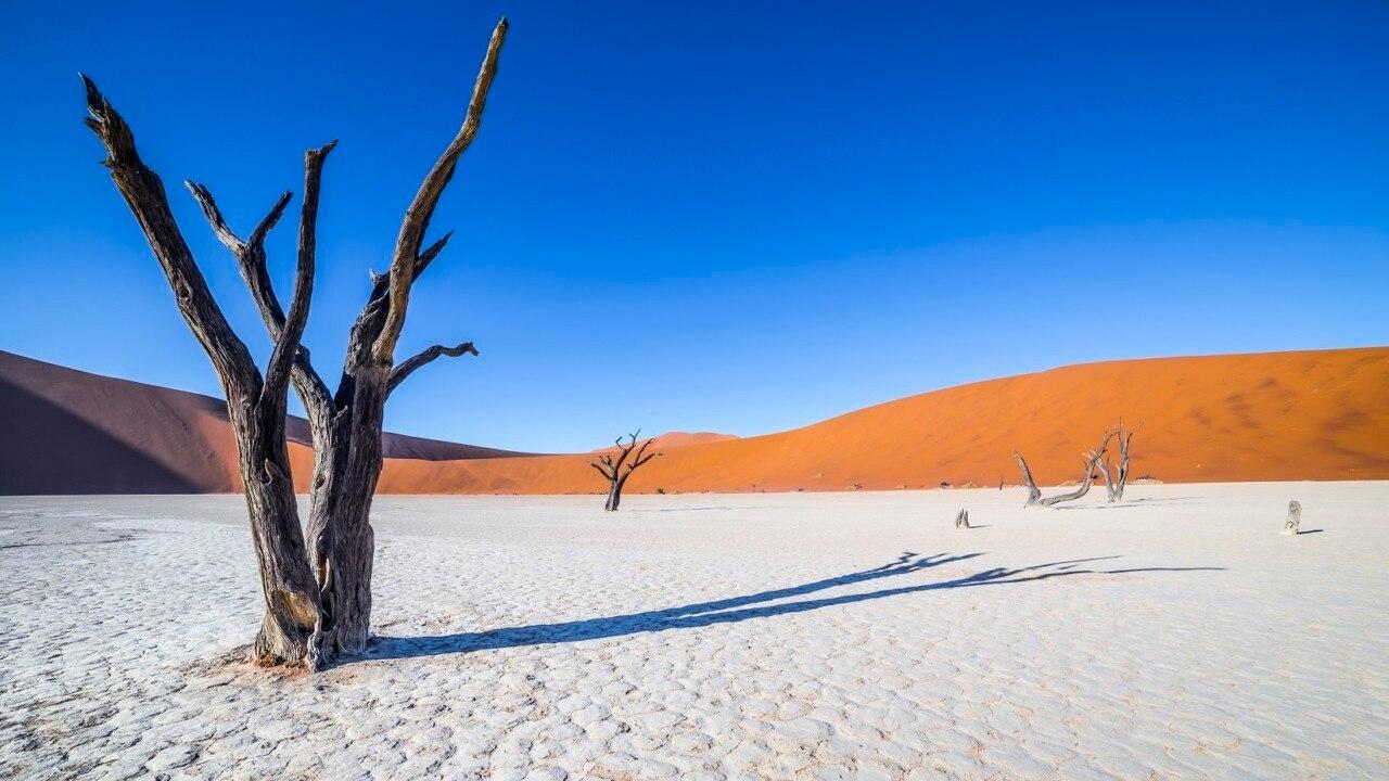 魂が震える砂漠の絶景!アフリカ・ナミビアの人気観光スポット14選