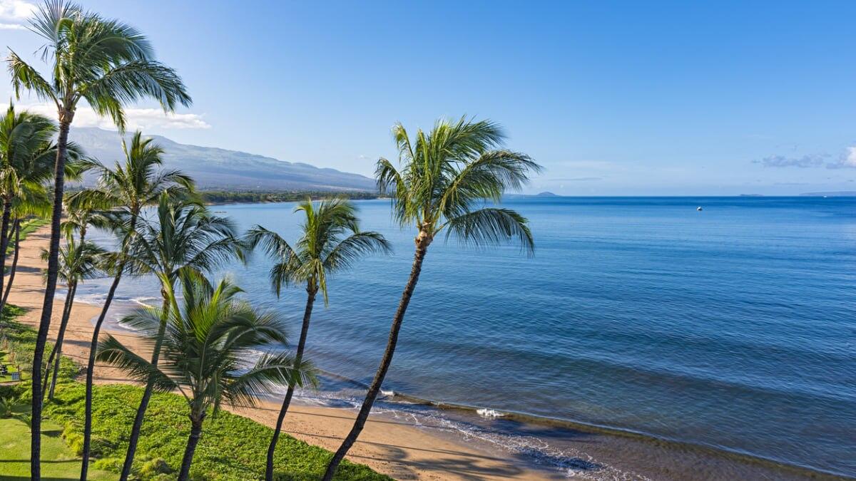 【南国の美しい海と自然を楽しむ】キヘイのおすすめホテルまとめ!