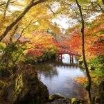 秋の行楽地