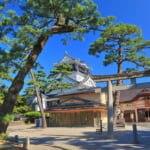 天下人を生んだ出世城!岡崎城の観光の見どころをわかりやすく解説します(画像は岡崎城)