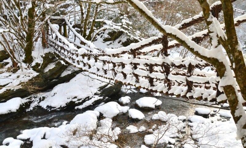 寒くても楽しめる冬の徳島観光、おすすめスポット6選