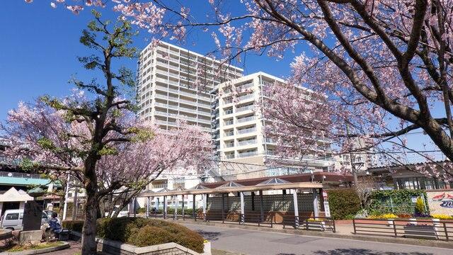 魅力が満載!愛知県岩倉市のおすすめ観光スポット5選