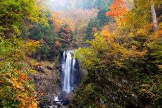 岐阜県の秘境天生峠の中滝
