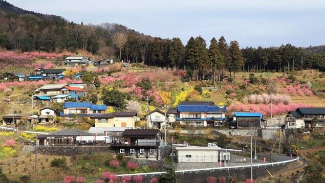 埼玉県小川町の観光10選 ユネスコ無形文化遺産・和紙の里!