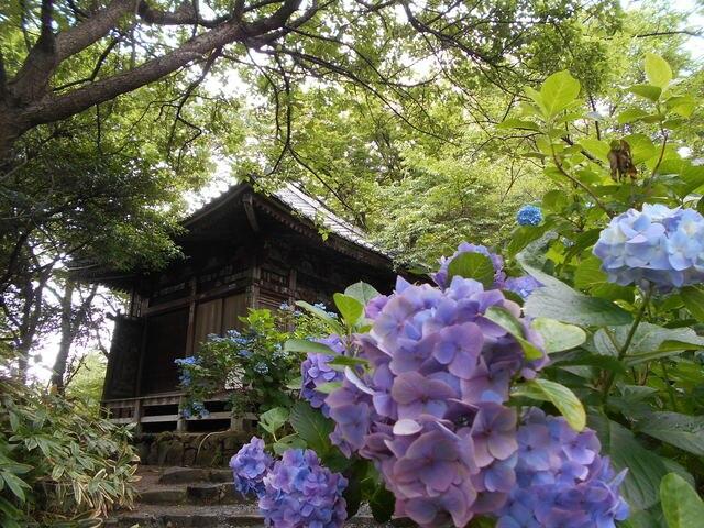 雨でも問題なく楽しめる!茨城県で押さえておきたい観光スポット10選