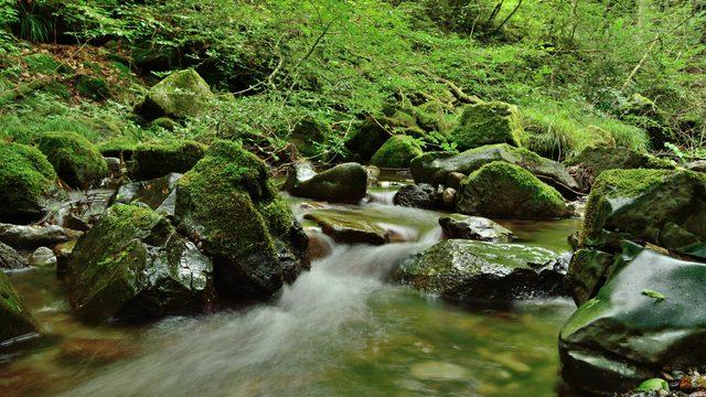 観光名所25選 自然あふれるあきる野市を満喫しちゃいましょう