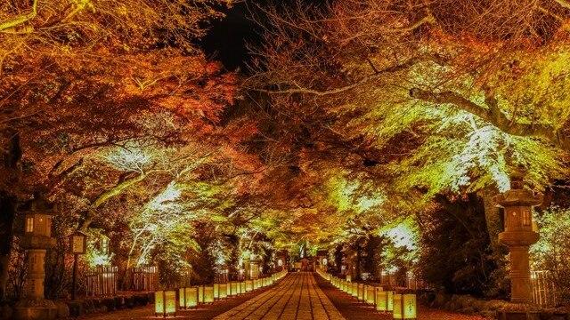 【滋賀県大津市石山寺】 紫式部と縁が深い寺で趣深いひとときを過ごそう