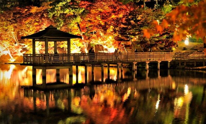 岡崎市の観光スポット15選!歴史を学び自然を感じて思いきり遊ぼう