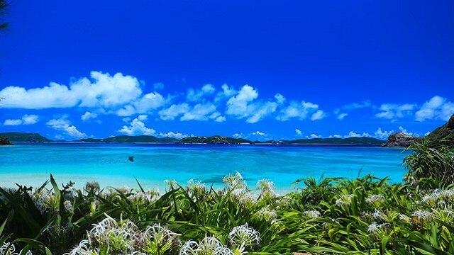 一生に一度は訪れたい世界有数の絶景の海!慶良間諸島の基礎知識4点