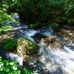 平成の名水百選に選ばれた南阿蘇村湧水群のおすすめ水源7か所をご紹介!
