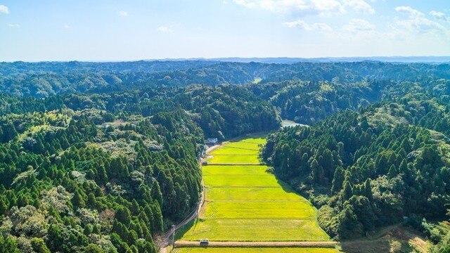 睦沢町・一宮町の観光スポット12選。外房きっての穀倉地帯へようこそ!