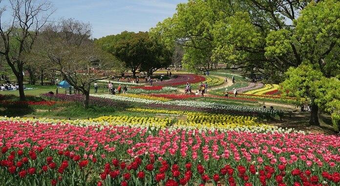 大阪の万博記念公園に行くなら見逃せない観光スポット14選