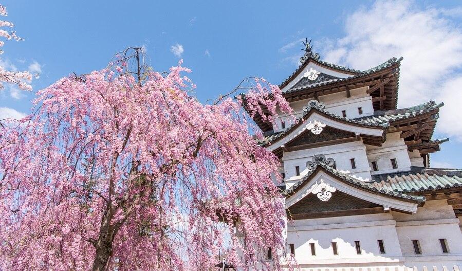 風情溢れる弘前城のお祭りは必見!青森県弘前市のお祭り4選をご紹介!