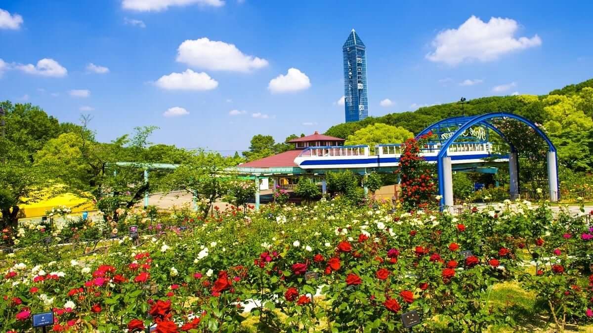 東山動植物園とは?人気の動物や遊園地、東山スカイタワーもご紹介
