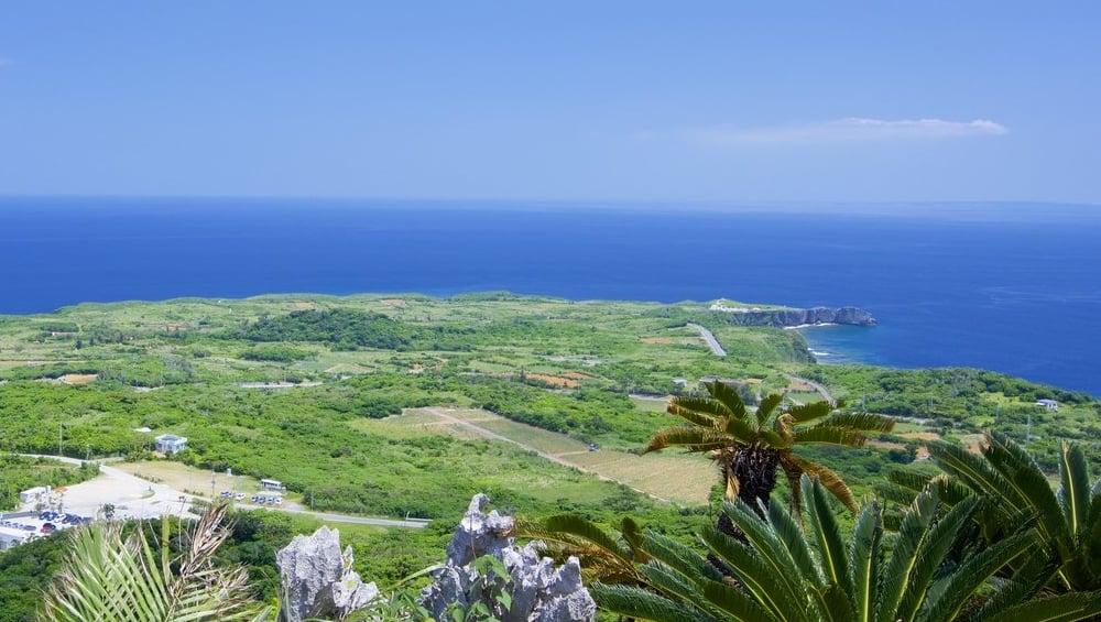 やんばるくいなの森が広がる沖縄本島北端の村・国頭村の観光スポット4選
