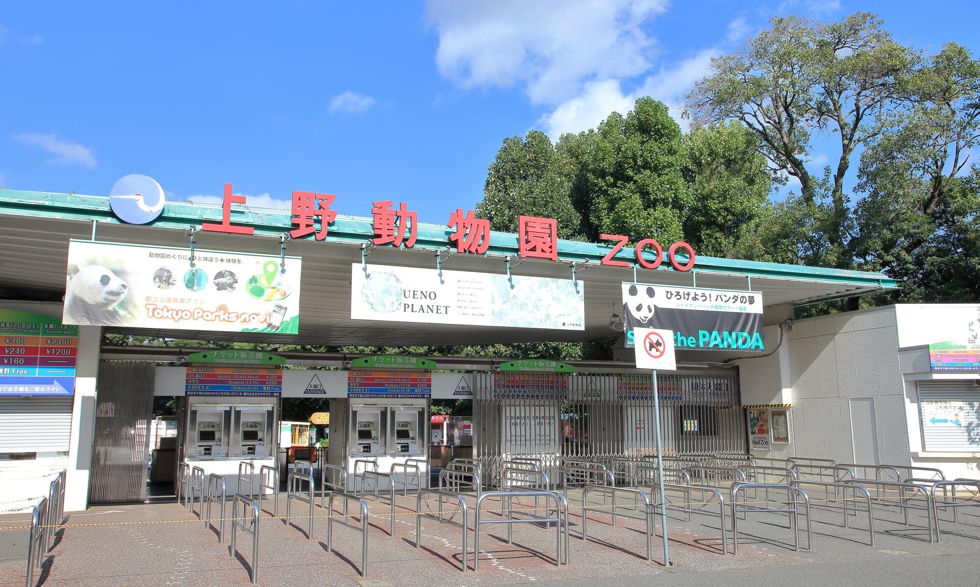 東京観光の代名詞!定番観光スポット・上野動物園の魅力に迫る