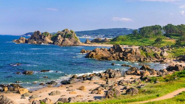 八戸「種差海岸」観光決定版!天然芝生と岩礁の景勝地、ウミネコの蕪島へ