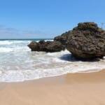 ウミガメだけじゃない!絶景に囲まれた「大浜海岸」の魅力に迫る