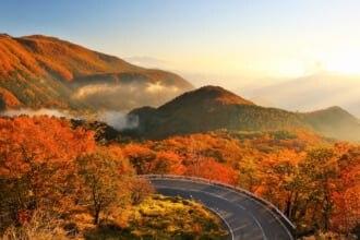 秋の日光を上空から眺められる