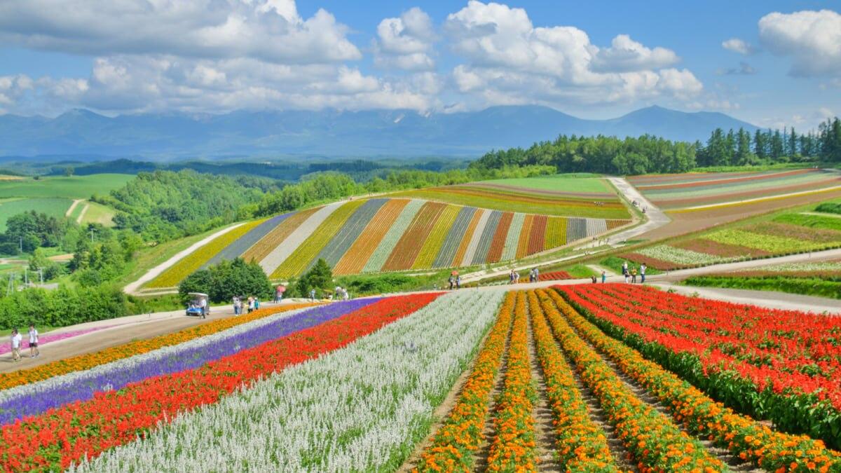 【北海道】GoToトラベルキャンペーンで泊まりたいホテル