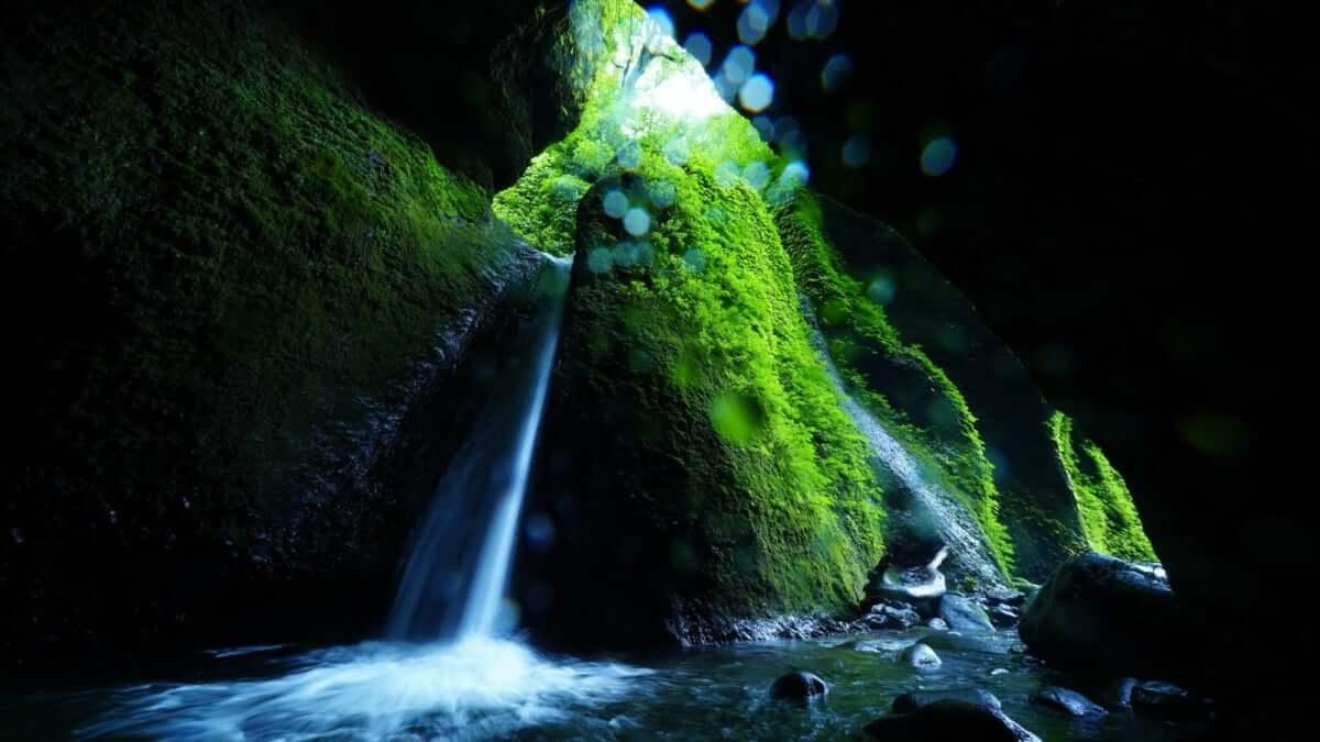 【兵庫/新温泉町】シワガラの滝 | 神秘的な滝に圧倒される!周辺観光地も紹介
