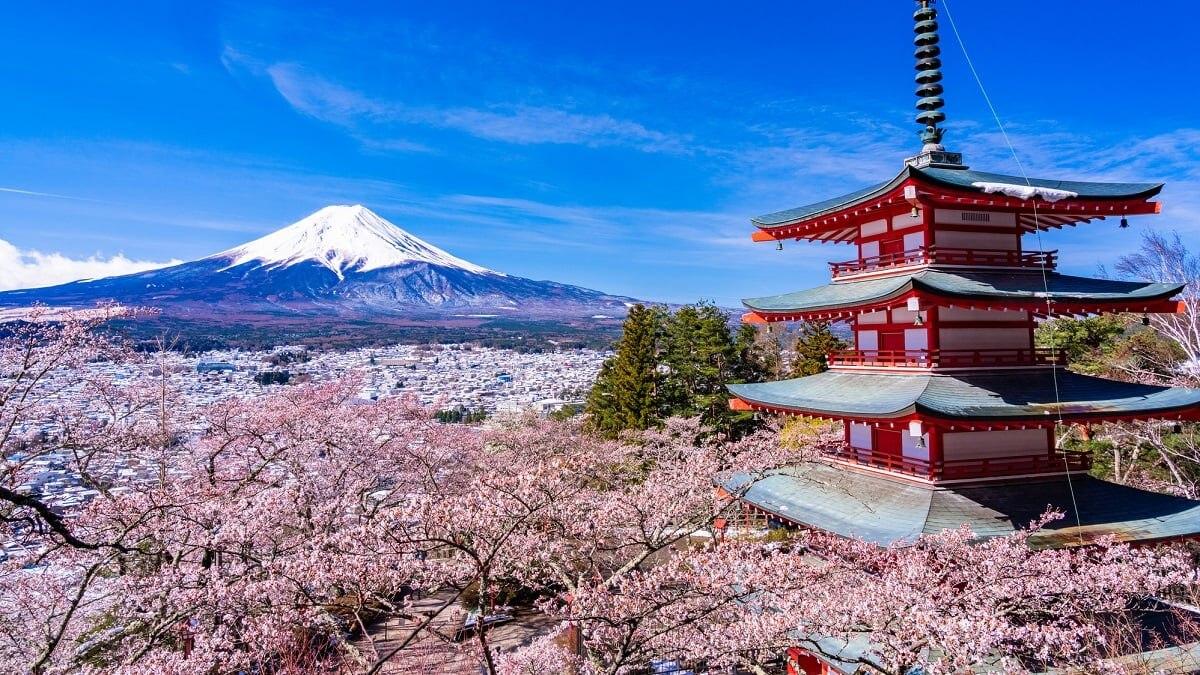 【絶景】富士山が見える桜の名所5選