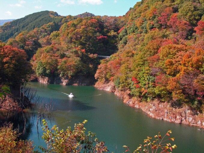 skyticket 観光ガイド清川村