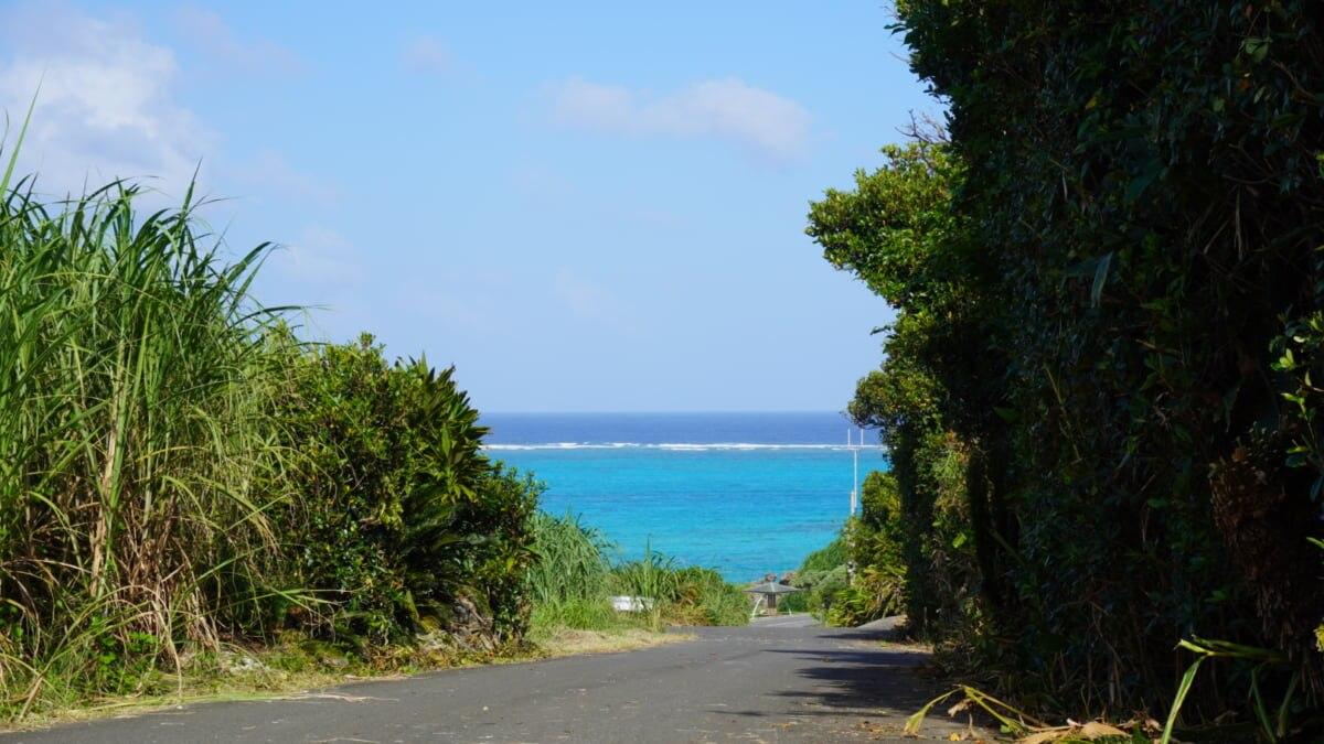【鹿児島最南端をランニング!】ヨロンSHIMA RUNキャンペーンを2021年2/1~28開催