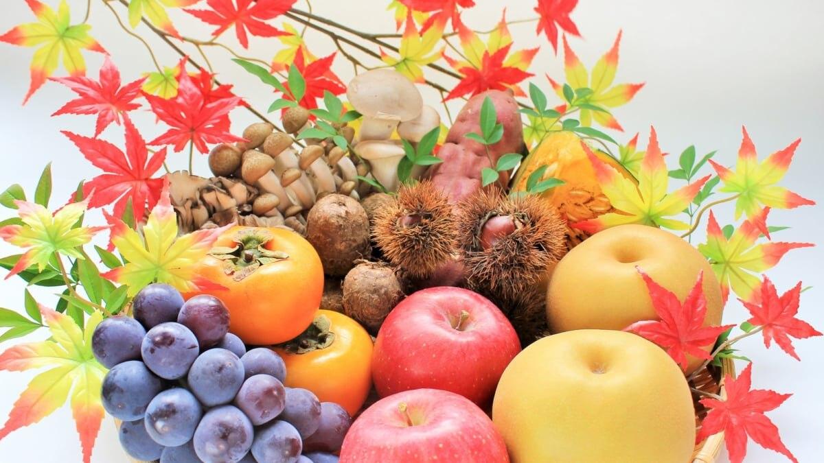 2019年・秋におすすめしたい 関東の果物狩り(フルーツ狩り)スポット🍎