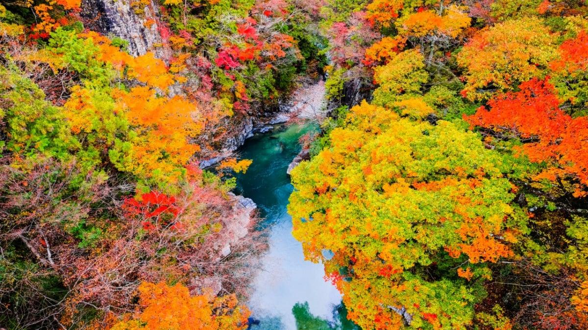 【岐阜】付知峡とは?紅葉狩りにも最適!エメラルドブルーが美しい自然豊かな渓谷