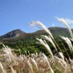 えびの高原・初秋の景色