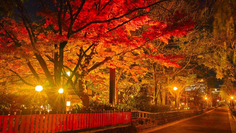 これは見ておきたい!感動を届ける京都の絶景スポット16選