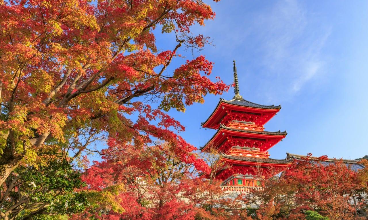近畿地方のおすすめ紅葉スポット2019秋|秋の関西で紅葉を満喫