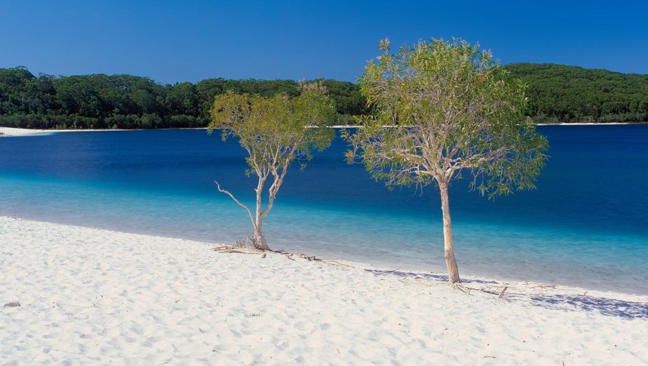 オーストラリアの世界遺産フレーザー島|世界最大の砂の島で観光&体験