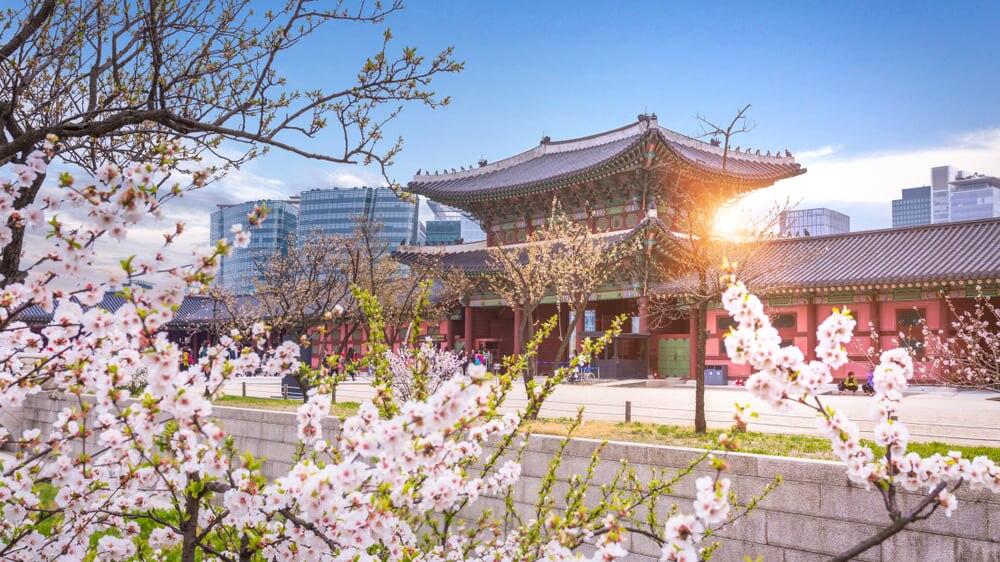 韓国のおすすめ観光地20選!人気のソウル、釜山、済州島から地方の穴場まで
